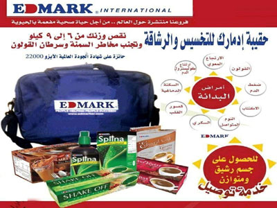 Edmark International Company - 2.jpg