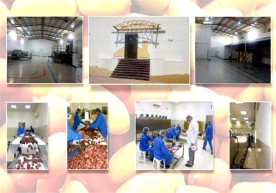 Al Maqtaa Dates Factory - 4.jpg